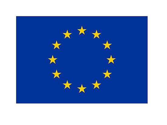 ELECCIONES EUROPEAS: LOS DESAFÍOS A LOS QUE SE ENFRENTA EUROPA
